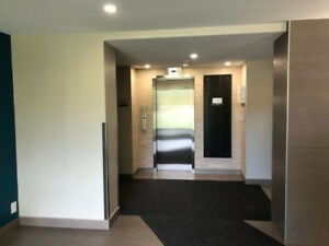Looking for a female roommate in a nice 2-Br apartment-Hamilton
