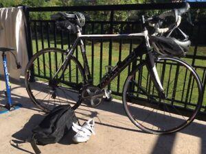 2015 MARIN Carbon Frame Bike - medium / large frame