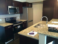 BRAND NEW CONDO NEAR U OF M FROM JULY 01 2015
