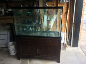110 Gallon Aquarium and stand