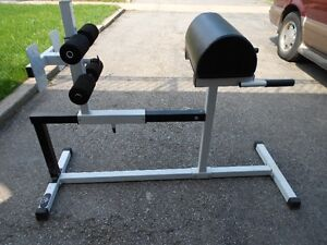 Yukon Glute Hamstring Back and Abs Hyperextension Bench ...