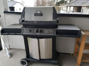 Natural Gas Broil King BBQ