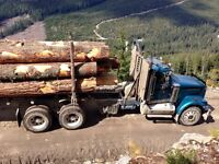 Logging truck driver. Contract driver