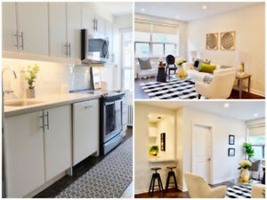 Sleek & Fashionable Newly Renovated 1BR Suites From 1825 & Up!