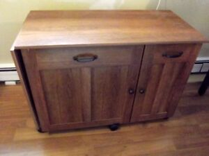 SEWING CRAFT CABINET
