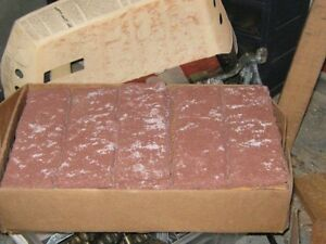 Bricks for indoors or outdoors-New price what gone