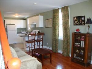 BRIGHT 1BR LOFT DOWNTOWN GREAT LOCATION!
