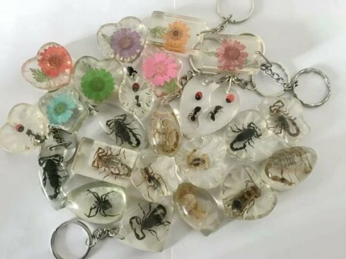 $ 6.99   12 pcs Newest Keychain mixed insect Back Collecting Hot