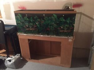 Large Fish Tank with Stand  London Ontario image 1