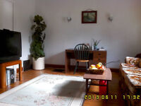 South side 3or4 bedroom single house for rent available sept 01.
