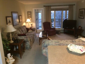 Large 1 bedroom + Den, Fully Furnished Condo