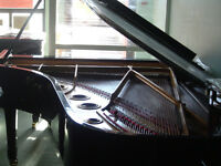Concert Grand piano Winkelmann 7'7''