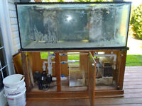 FREE 200 Gallon Glass Aquarium