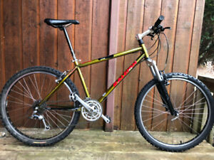 Raleigh XRP Chill Steel Mountain Bike