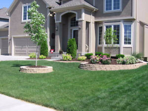 Ayce Landscaping * Premium Sod Installations*
