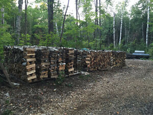 Firewood For Sale - Dry Seasoned Wood