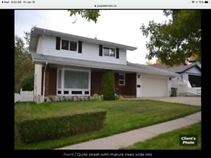 Two Storey house in St Albert, by owner, 4 bedroom