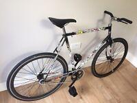 Cheap single speed (or fixie) bike