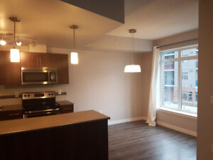 GORGEOUS 1-Bed Condo w/ River View in Downtown
