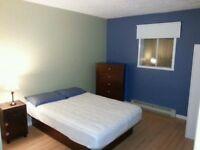 Grande chambre à louer 330 $/ mois (Libre en JUILLET)
