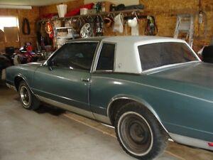 1982 monte carlo for sale