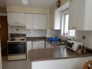Used Kitchen Cabinets, Sink, Countertops and Hood.