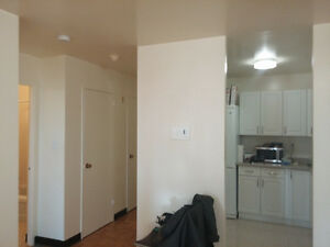 Spacious 1 bedroom apt winter sublet (+option for summer) Kingston Kingston Area image 9