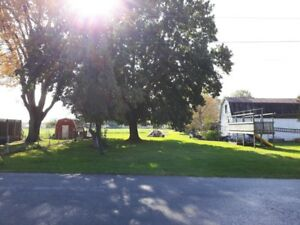 Build Dream Home in Vineland - 2 minute from QEW on Victoria