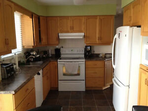Room for rent in home near UW and Accelerator Centre Kitchener / Waterloo Kitchener Area image 2