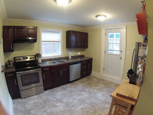 Room for rent in downtown house St. John's Newfoundland image 7