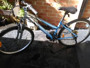 Lady's 26 inch bike