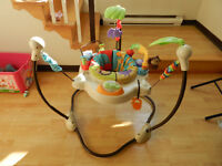 Sauteur exerciseur Jumperoo Fisher Price