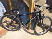 Mountain Bike - Classic Univega 16 inch frame
