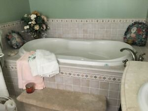 Chrome Therapy Air Jet Hydro Therapy Tub