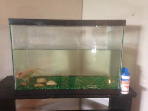 20 and 10 gallon fish tanks plus accessories