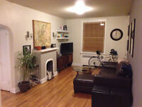 A GREAT ONE BEDROOM, CENTRE TOWN, April 1st