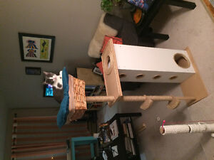 Amazing Custom Cat Condo-Scratching post and climbing ladder
