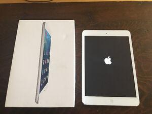16G iPad Mini