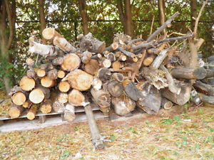 Fire Wood - p/u Truck full - almost 2 cords