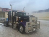W900 long nose for sale