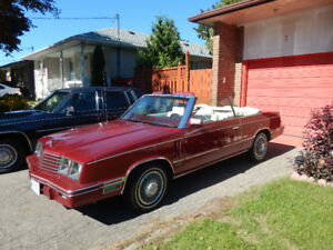 1984 Dodge 600 Turbo Convertible well maintained.