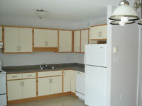 New 2 Bedroom apartment for rent in Monastery