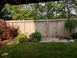 One bedroom Walkout basement apartment form 950.00 - 1050/month