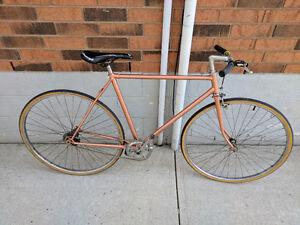 Fixed Gear/Free Wheel Bike