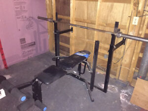 Weights and Gym Equipment (Bars, plates, bench, rack, etc)