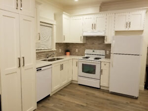 Ladner 1 bedroom brand-new  rental suite beautifully furnished