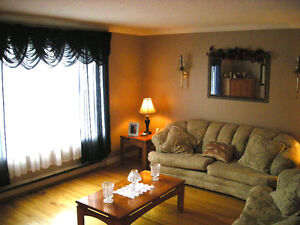 THIS WEEKEND ONLY - Prime 2 apt in Cowan Heights St. John's Newfoundland image 3