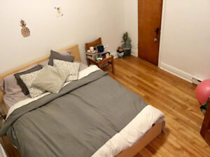Laurier Station, 1 bedroom in 2 bed 1 bath apartment/August 1st