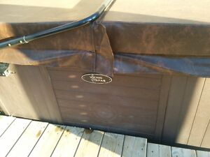2012 Viking Royale hot tub with brand new cover Kitchener / Waterloo Kitchener Area image 5
