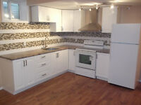 2 bedroom basement suite with private entrance.